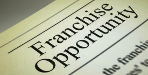 Franchise alternative opportuntity