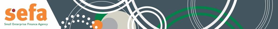Small Enterprise Finance Agency finance option