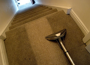 carpet cleaning a business idea